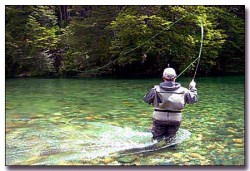 fly-fishing in the Falling Springs